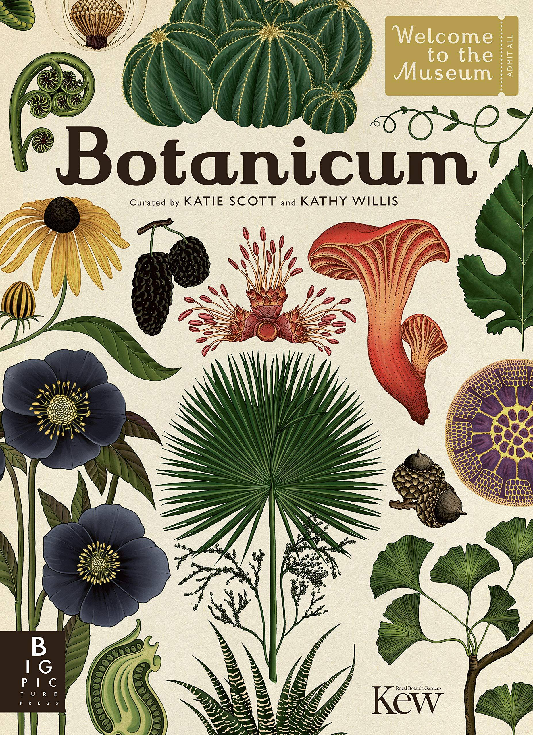 Botanicum by Katie Scott and Kathy Willis
