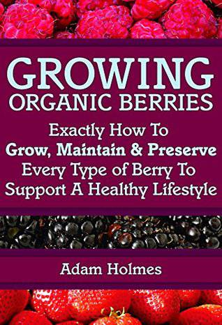Growing organic berries by Adam Holmes